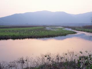 обои Горные речушки фото