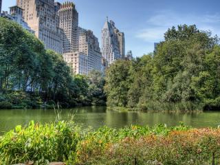 обои Central Park фото