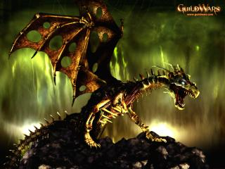 обои Guildwars дракон фото