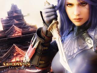 обои Guildwars Factions воительница фото