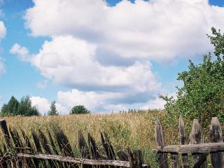обои Ветхий забор фото