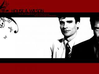 обои Хаус и Вильсон на белом фоне в черной рамке фото