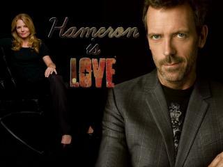 обои Hameron is love фото