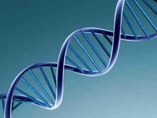 обои Молекула ДНК фото