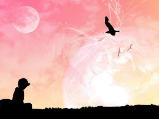 обои Человек смотрит в небо - почему люди не летают,  как птицы фото