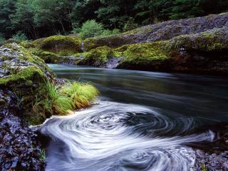 обои Clackamas River фото