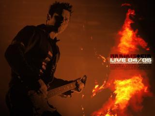 обои Гитарист группы Rammstein фото