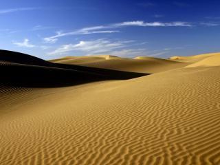 обои Сухая пустыня фото