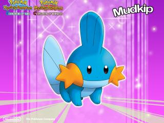 обои Покемон водного типа Mudkip фото