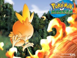 обои Огненный цыпленок поджигает солому фото