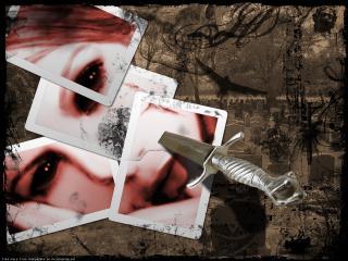 обои Пробитое ножем фото фото