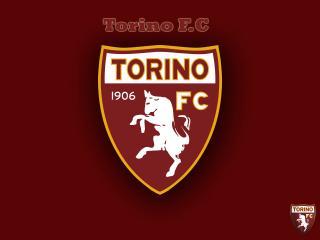 обои Torino FC фото