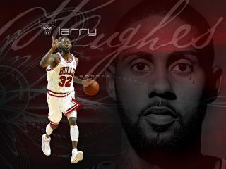 обои Баскетболист Larry фото
