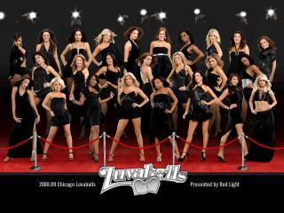 обои Женский баскетбол - LuvaBulls фото