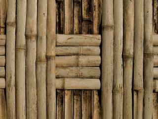 обои Бамбуковый плод в шахматном порядке крупный фото