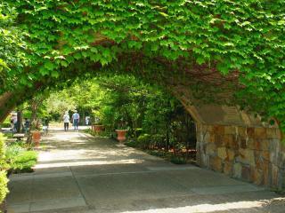 обои Проход через арку в парке фото