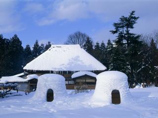 обои Дом в зимнем лесу фото