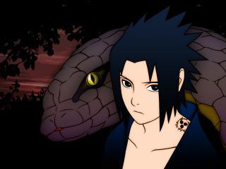 обои Naruto - Саске и змей фото
