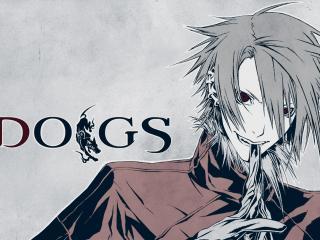 обои Dogs - парень с красными глазами фото