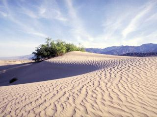 обои Песчаные барханы фото