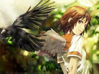 обои Альянс серокрылых - Крылатая девушка и ворон фото