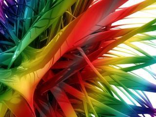 обои Разноцветный мир фото
