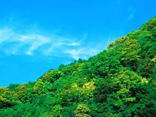 обои Летняя пора высоко в горах фото