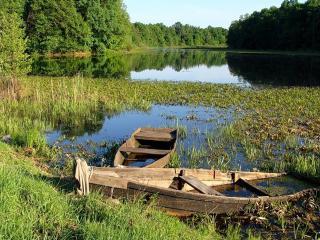 обои Затопленные лодки на берегу летнего пруда фото