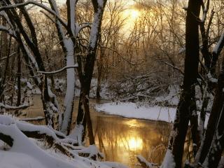 обои Harpeth River. Winter Sunrise, Williamson County, Tennessee фото