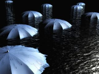 обои Плавающие зонтики фото