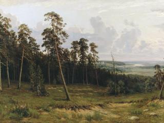 обои Богатый лог (Пихтовый лес на реке Каме) фото
