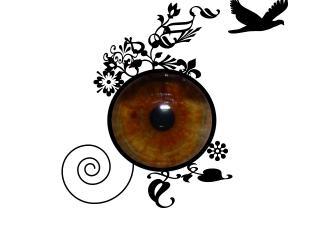 обои Глаз в моей обработке фото