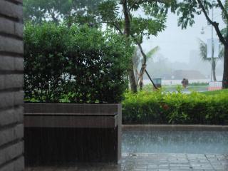 обои А дождь идет фото