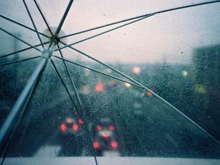 обои Прозрачный зонтик под дождем фото