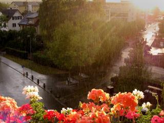 обои Дождливый город вид с балкона фото