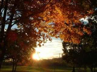 обои Это прекрасное время года осень фото