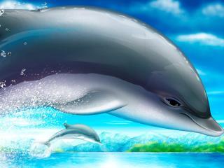 обои Дельфины фото
