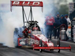 обои Budweiser Top Fuel Dragster фото
