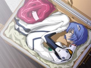 обои Evangelion - Рей свернулась калачиком в чемодане фото