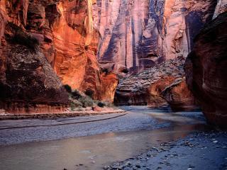 обои для рабочего стола: River Bend, Paria Canyon