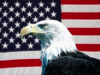 обои для рабочего стола: American Eagle