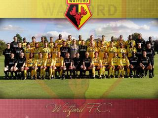 обои Watford Football Club фото