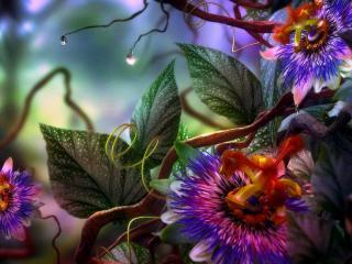 обои Разноцветные цветы под водой фото