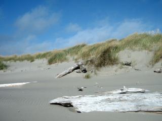 обои Песчанный берег фото