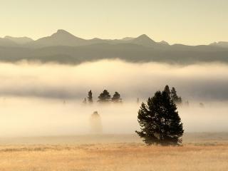 обои Туман над долиной в Вайоминге фото