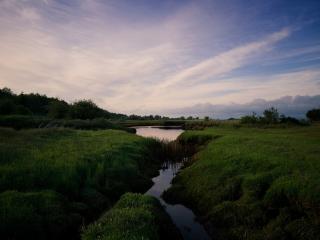 обои Летний ручей, среди зеленых полей на восходе фото