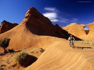 обои Велосипедист в пустыне фото
