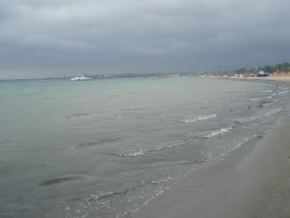 обои Море перед бурей фото