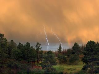 обои Гроза над лесом,   на закате фото