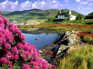 обои Дом на природе фото
